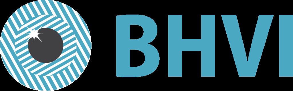 Brien Holden Vision Institute logo